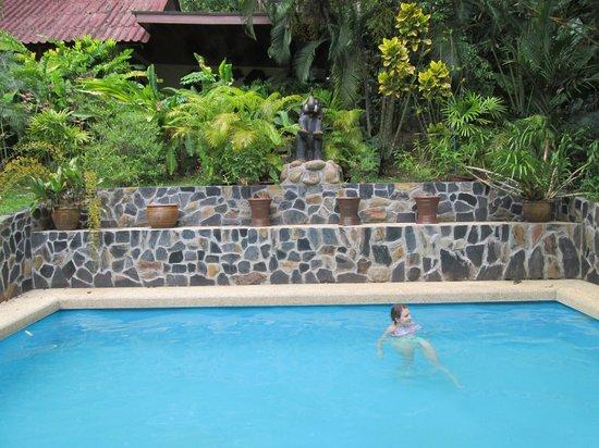Khao Sok Las Orquideas Resort: The pool