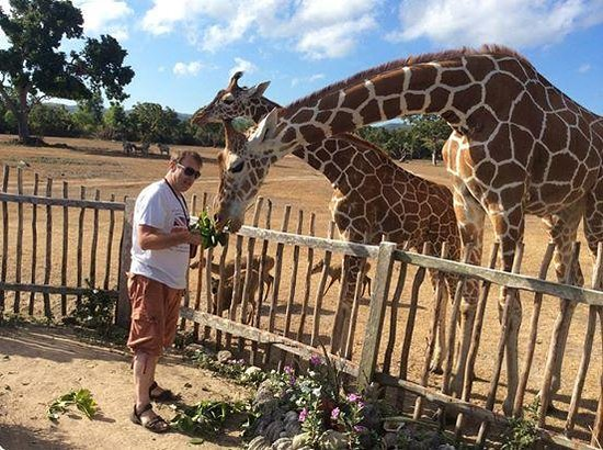 Asia Grand View Hotel: Feeding the giraffes at Calauit