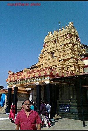Sringeri, India: Adisankara temple visual by Muralitharan