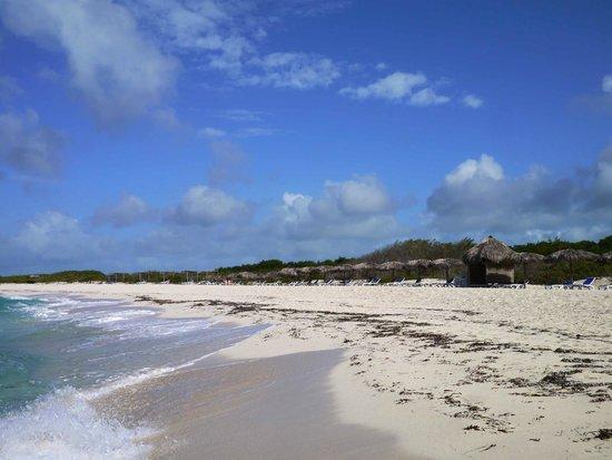 Melia Buenavista: open sea beach