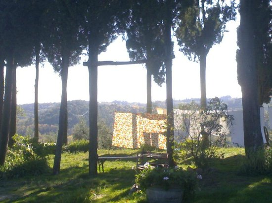 Tasty Tuscany: The magic circle of cypresses