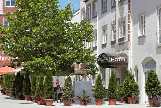 호텔 바이세스 로스
