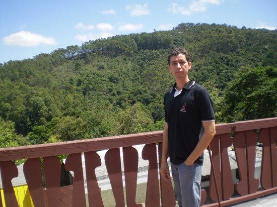 Vacance Hotel : Muita área verde