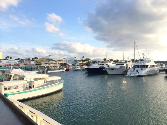 Pelican Bay at Lucaya: Yachts Harbor by Pelican Bay Resort