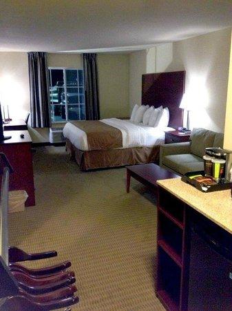Cobblestone Hotel Suites Knoxville Ia Photo