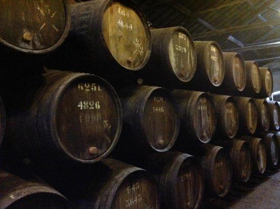 Taylor's Port: Port barrels