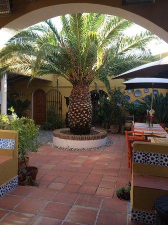 B&B Finca La Loma: De mooie patio!