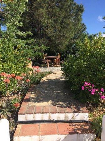 B&B Finca La Loma: De prachtige tuin!