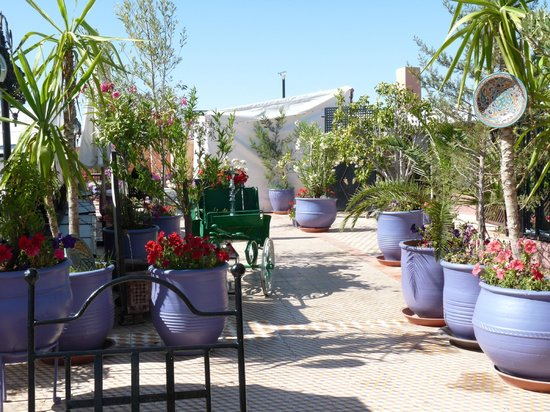 Restaurant El Bahia : La terrasse 1