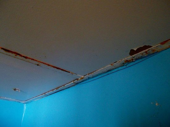 Aquarius Condominiums: Rust on Shower Ceiling tile frame