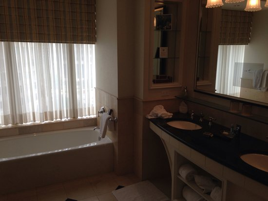 The Ritz-Carlton, Dallas: Bath with a view