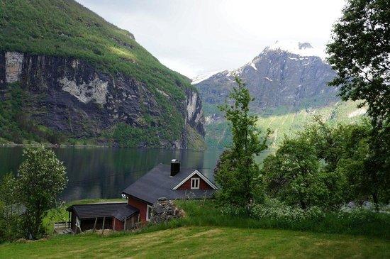 Grande Hytteutleige og Camping: Vy från vår hytte