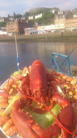 MacGillivray's Seafood: lobster