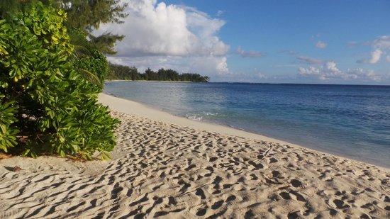 Denis Private Island Seychelles: beach