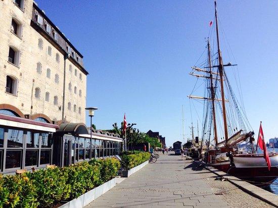 Copenhagen Admiral Hotel: Calçadão atrás do hotel.