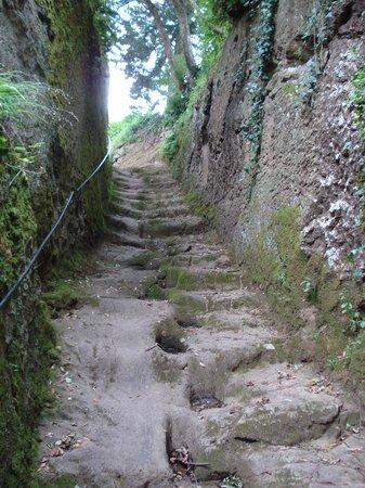 Museo Archeologico all'Aperto Alberto Manzi: Via Cava del Gradone