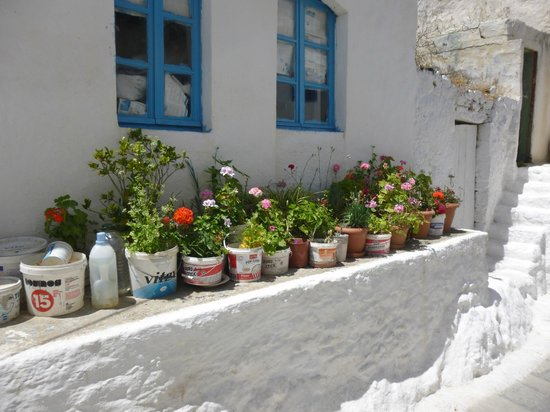 Nisyros Volcano: empty paint buckets as plant containers
