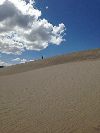 Bruneau Dunes State Park: Medium Dune