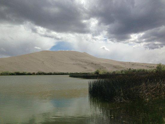 Bruneau Dunes State Park: Small lake at bottom of large dune