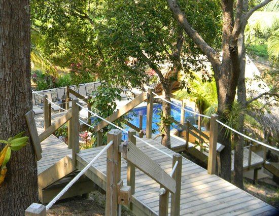 Upachaya: 89 steps down to sea level and a nice pool for guests.