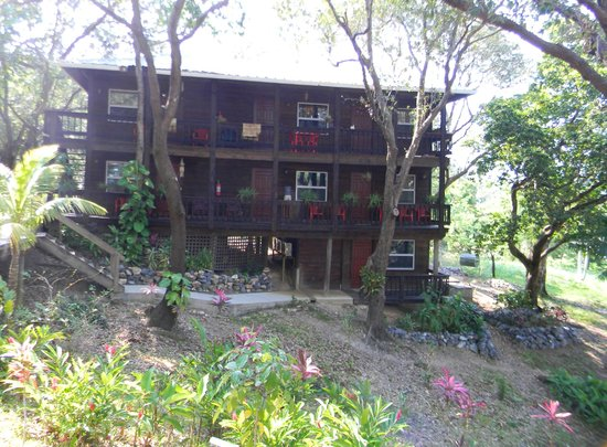 Upachaya: The spotlessly clean and charmingly decorated Ecolodge