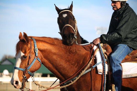Live horse racing at Remington Park