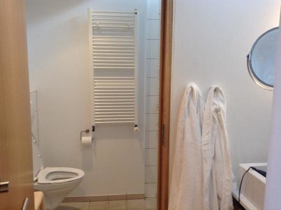 Silica Hotel: ample bathroom with hairdryers & euro outlets