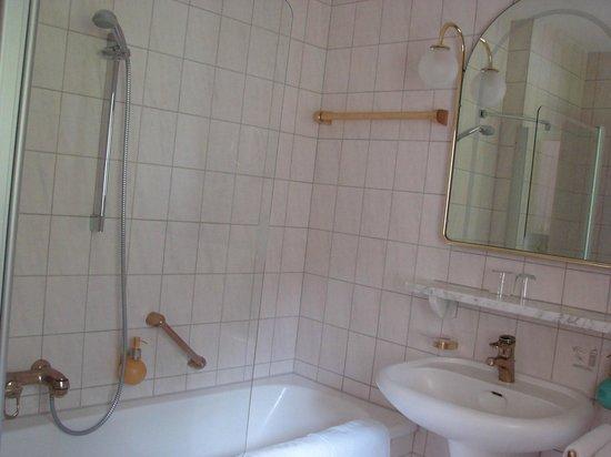 Hotel Müller: Baño