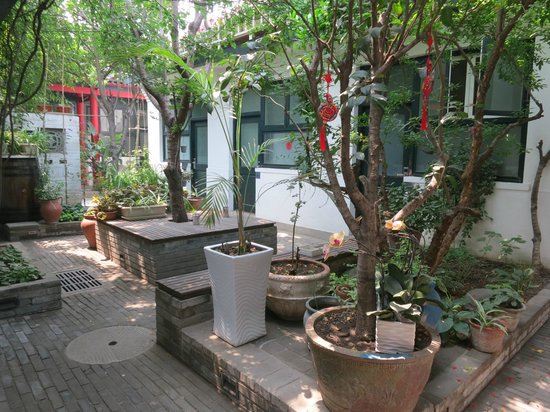 Peking Yard Hostel: Outdoor ground level