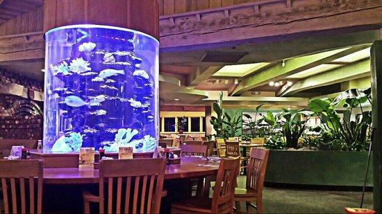 Kings Hawaiian Bakery & Restaurant: Fish tank in dining room
