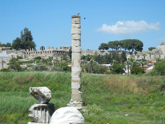 Ephesus Deluxe Tours: Ruins