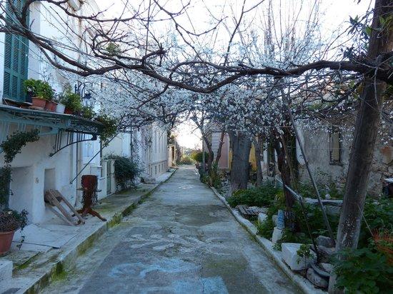 Anafiotika: Primavera en invierno...