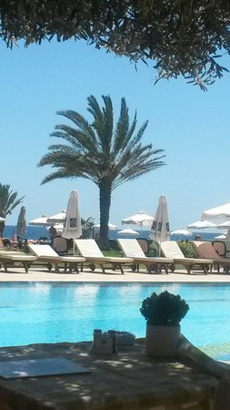 Constantinou Bros Athena Royal Beach Hotel: View from Olive Tree