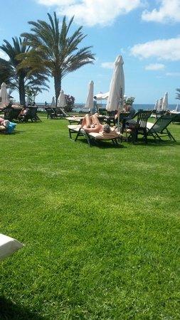 Constantinou Bros Athena Royal Beach Hotel: View across well kept gardens to sea