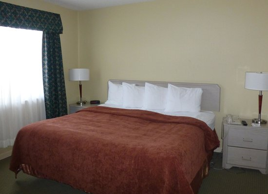 Quality Suites Laval: Room 242