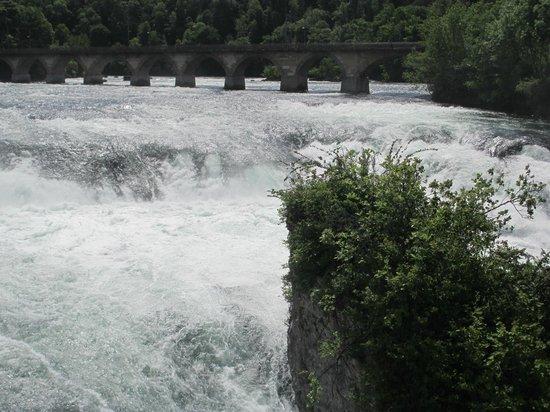 Rhine Falls : falls view