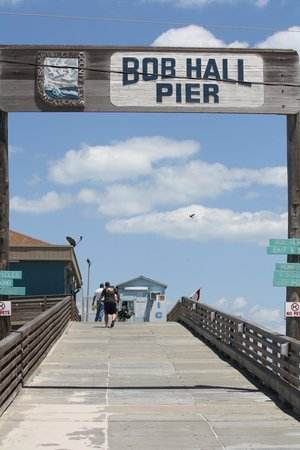 Padre Island National Seashore: Pier to walk out on.