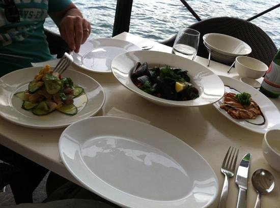 Sydney Cove Oyster Bar: Light lunch ...