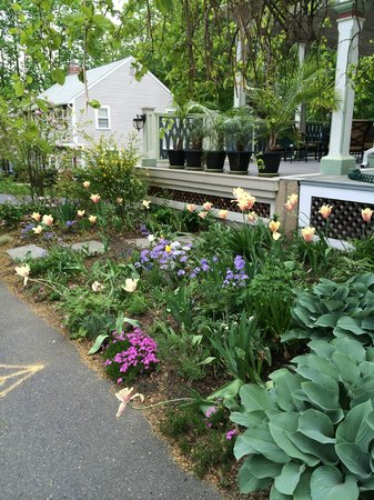 Chesley Road Bed and Breakfast: front garden