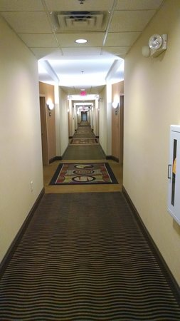 Comfort Suites At WestGate Mall: Hallway