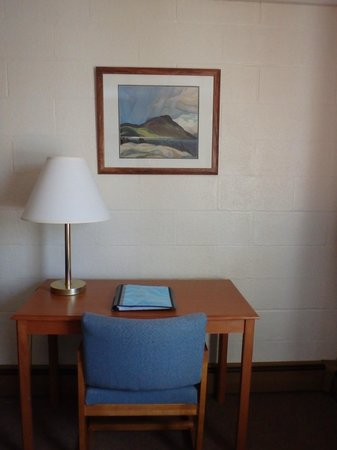 Shaheen's Adirondack Inn: Set up your computer and work at your desk!
