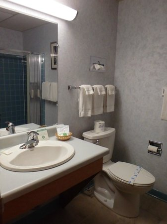 Shaheen's Adirondack Inn: Recently renovated bathrooms-Neat and clean