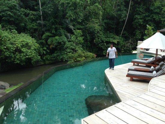 Four Seasons Resort Bali at Sayan: swimming pool is along the river
