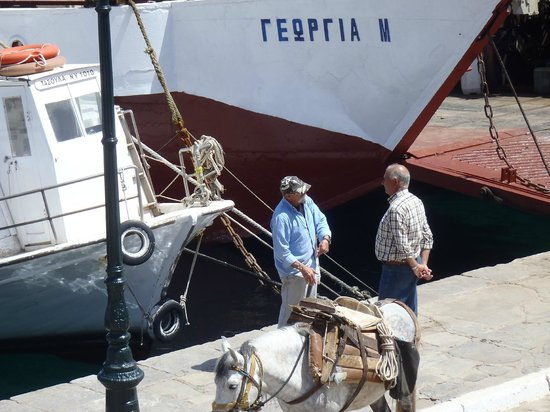 Hotel Sophia: Donkeys taking goods off the boast