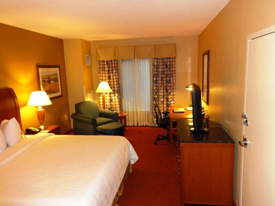 Hilton Garden Inn Chicago O'Hare Airport: King Bed
