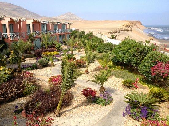 Chicama Surf Hotel & Spa: Garden