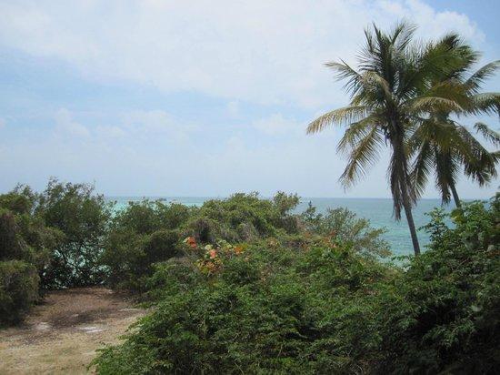 Bahia Honda State Park and Beach: The views