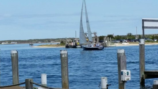 Oak Bluffs Inn: Oak Bluffs harbor