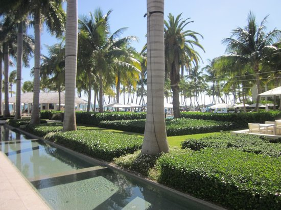 Casa Marina, A Waldorf Astoria Resort : Pool Area