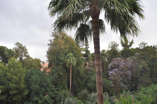 Hotel Kenzi Farah: vue de la chambre